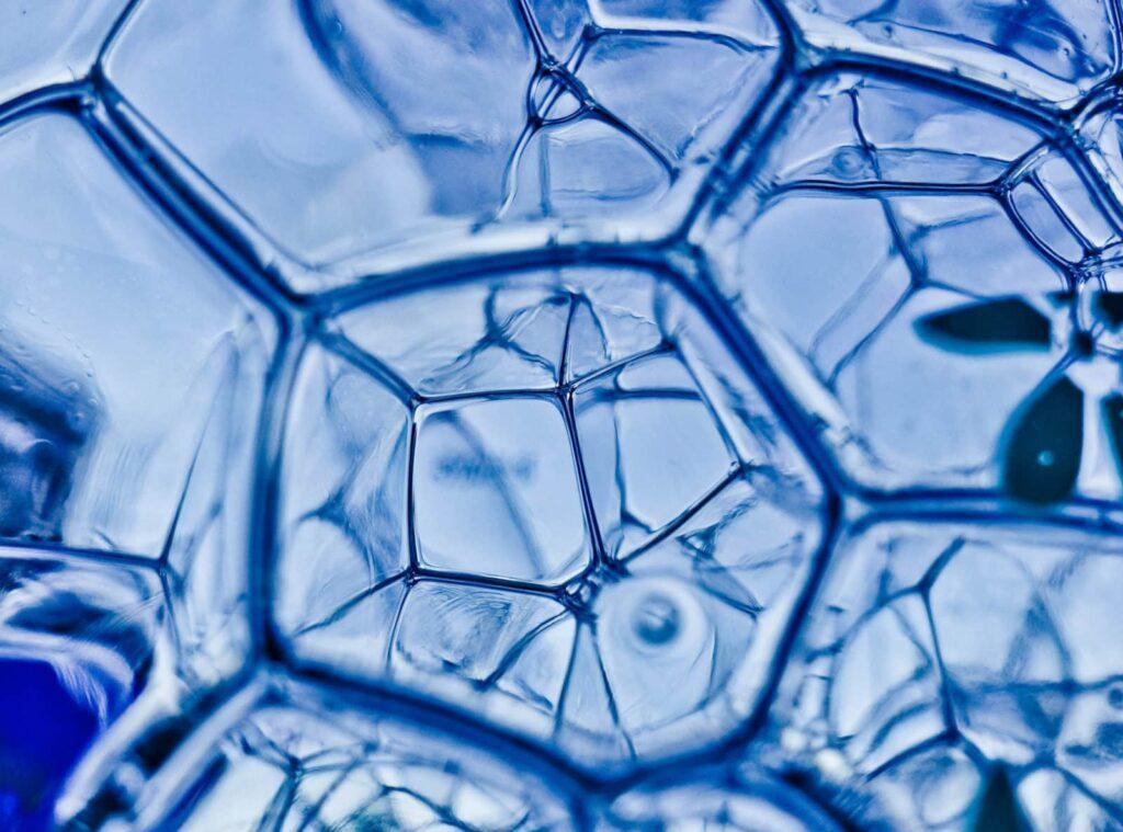 water molecule